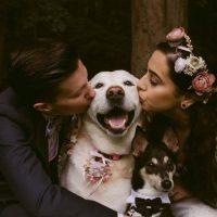 ペットと叶える結婚式の演出